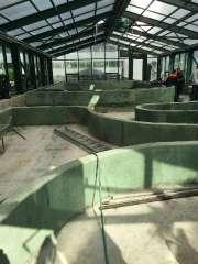 Чаши бассейна в оранжерее