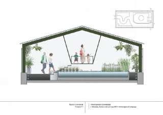Дизайн-проект оранжереи (Разрез)